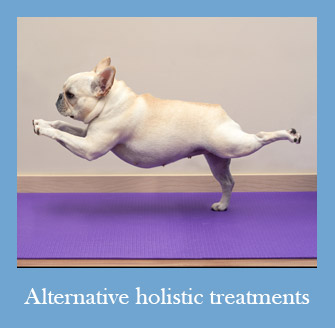 Holistic Pet Care